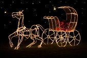 foto of carriage horse  - A large shining horse - JPG