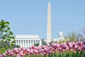 image of washington skyline  - Washington DC skyline with monuments including Lincoln Memorial - JPG