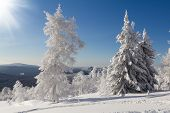 picture of ural mountains  - Winter snow - JPG
