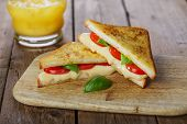 pic of tomato sandwich  - fried toast sandwich with mozzarella and cherry tomatoes - JPG