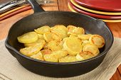picture of sauteed  - Sauteed summer squash in a cast iron skillet - JPG