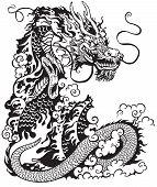 foto of dragon  - chinese dragon - JPG