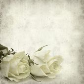 image of pale  - textured old paper background with pale yellow rose flower - JPG