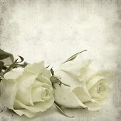 picture of pale  - textured old paper background with pale yellow rose flower - JPG