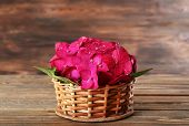pic of hydrangea  - Beautiful pink hydrangea flowers on wooden background - JPG