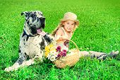 picture of happy dog  - Happy little girl with her mastiff dog on a meadow in summer day - JPG