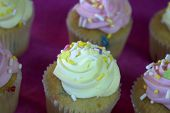 stock photo of sprinkling  - This is a photograph of Vanilla cupcakes topped with Pink and Yellow buttercream - JPG