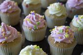 picture of sprinkling  - This is a photograph of Vanilla cupcakes topped with Pink and Yellow buttercream - JPG