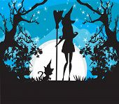 stock photo of broom  - young witch silhouette with a broom and a cat at night  - JPG