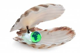 foto of oyster shell  - The earth inside an opening sea shell - JPG