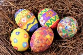 stock photo of easter eggs bunny  - five easter eggs set on a nest - JPG