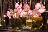 stock photo of massage oil  - Essential body massage oils in bottles for bodycare - JPG