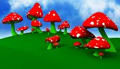 foto of shroom  - Mushrooms - JPG