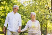 old age, relationship and people concept - happy senior couple walking at summer park poster