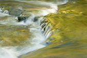 image of spearfishing  - Fall colors reflecting in the flowing waters of Spearfish Creek in the Black Hills of South Dakota - JPG