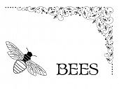 Bees intermingled in corner flourish (bees' lower bottom shaped like a bee hive as showen in large c