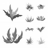 Isolated Object Of Foliage And Floral Sign. Collection Of Foliage And Summer Stock Symbol For Web. poster
