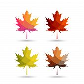 Autumn Leaves Vector Logo With Colorful Styles,maple Leaf With Autumn Color Schemes. Autumn Logo, Au poster