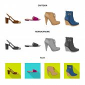 Vector Illustration Of Footwear And Woman Logo. Set Of Footwear And Foot Vector Icon For Stock. poster