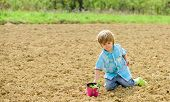 Planting In Field. Planting Seedlings. Little Helper In Garden. Boy Sit On Ground Planting Flower In poster