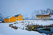Traditional yellow rorbu house in drying flakes for stockfish cod fish in norwegian fjord in winter. poster