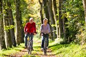 stock photo of woman couple  - Senior Man and woman exercising with bicycles outdoors - JPG