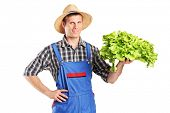 A smiling farmer holding a lettuce in his hand isolated on white background