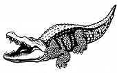 Постер, плакат: Нильский крокодил черный белый