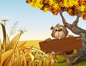 stock photo of beaver  - Illustration of a beaver at the top of the hill holding a wooden signboard - JPG