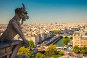 stock photo of gargoyles  - Gargoyle on Notre Dame Cathedral - JPG