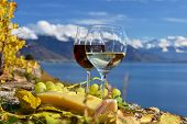 pic of grape  - Two wineglasses - JPG
