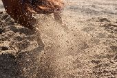 foto of horses ass  - Exploding sand and dust behind horse hooves - JPG