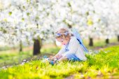 pic of blue angels  - Adorable toddler girl with curly hair and flower crown wearing a magic fairy costume with a blue dress and angel wings playing in a sunny blooming fruit garden with cherry blossom and apple trees - JPG