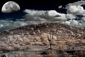 stock photo of thunderhead  - Moon Desert storm over the southwestern desert and mountains - JPG