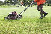 image of grass-cutter  - worker cutting grass field with Lawn mower - JPG