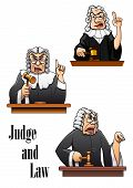 pic of law order  - Cartoon judge characters with gavel hammer and wig - JPG
