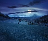 image of moon-flower  - village in mountains behind the agricultural meadow with flowers on hillside at night in full moon light - JPG