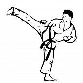Постер, плакат: Karate kick