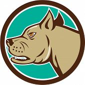 image of mongrel dog  - Illustration of a head of an angry mastiff dog mongrel viewed from side set inside circle on isolated background done in cartoon style - JPG