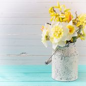 stock photo of daffodils  - Background with fresh spring yellow daffodils flowers on turquoise painted wooden planks against white wall - JPG