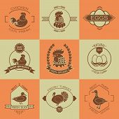 image of poultry  - Set of poultry farm logo and emblem - JPG