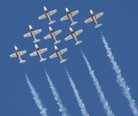 picture of snowbird  - Canadian Snowbirds at the Reno Stead Air Races