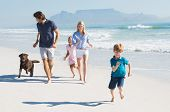 Family playing with pet on the beach. Happy beautiful family running at beach with pet dog. Smiling  poster