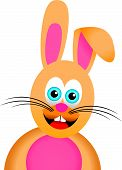 image of rabbit hutch  - a cartoon colorful bunny grinning and smiling - JPG