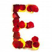 Постер, плакат: Письмо лепестков роз