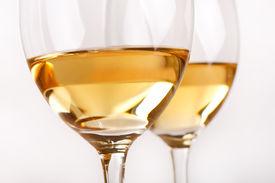 foto of wine-glass  - Glasses of white wine - JPG