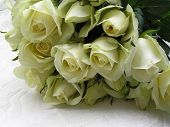 picture of white roses  - photograph of a bouquet with creamy white wedding roses on top of a wedding dress with a pattern of white roses - JPG