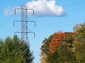stock photo of power lines  - power lines and a telephone pole in the fall - JPG