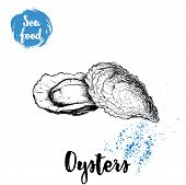 Hand Drawn Oysters Composition. Seafood Sketch Style Illustration. Fresh Marine Mollusks In Closed A poster