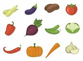 Vector Vegetables Healthy Tomato, Carrot, Potato Vegetarians Pumpkin Organic Food Modern Vegetably W poster